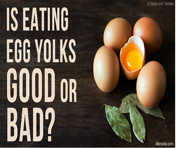 Nutritional value and benefits of egg consumption